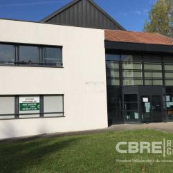 Location Bureau Wissembourg 560 m²