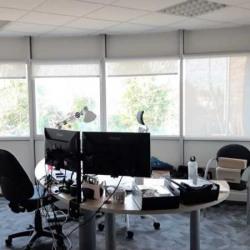 Vente Bureau Artigues-près-Bordeaux 350 m²