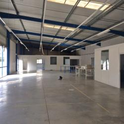Location Bureau Montpellier 111 m²