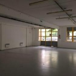 Location Entrepôt Bagneux 206 m²