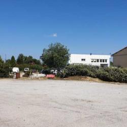 Location Local d'activités Saint-Estève 300 m²