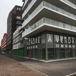 Vente Local commercial Strasbourg (67100)