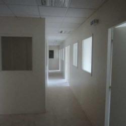 Vente Bureau Émerainville 902 m²
