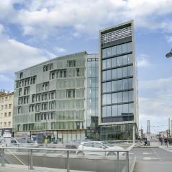 Location Bureau Lyon 7ème 449 m²