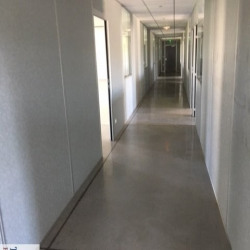 Location Bureau Baillargues 207 m²