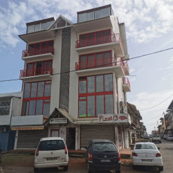 Location Local commercial Cayenne 167 m²