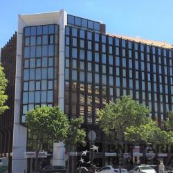 Location Bureau Marseille 8ème 545 m²