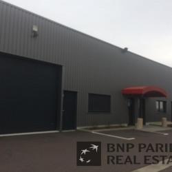 Location Local d'activités Levernois 186 m²