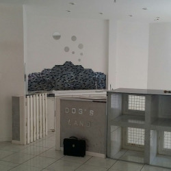 Vente Local commercial Nice 38 m²