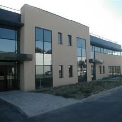 Location Entrepôt Le Mesnil-Amelot (77990)