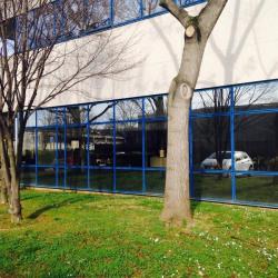 Location Local d'activités Gennevilliers 290 m²
