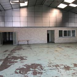 Location Local d'activités Magny-en-Vexin 490 m²