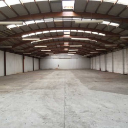 Location Local d'activités Linselles 3072 m²