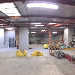 Location Local d'activités Saint-Laurent-du-Var 300 m²