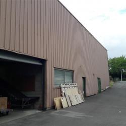 Vente Local d'activités Noisiel 2506 m²