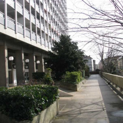 Location Bureau Lyon 3ème 461 m²