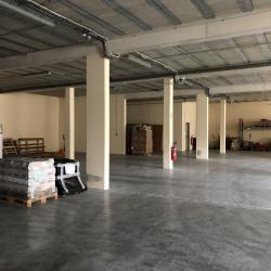 Vente Local d'activités Brie-Comte-Robert 2478 m²