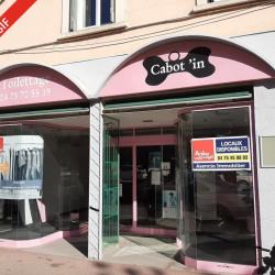 Vente Local commercial Romans-sur-Isère (26100)