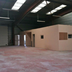 Location Local d'activités Cugnaux 250 m²