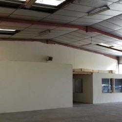 Location Local d'activités Saint-Jean-de-Védas 332 m²