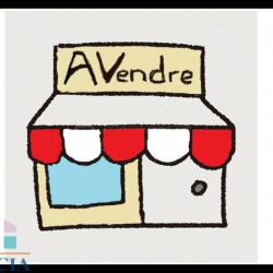 Vente Local commercial Tarbes 53 m²
