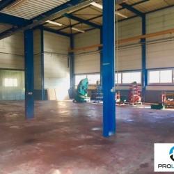 Vente Local d'activités Charleval 524 m²