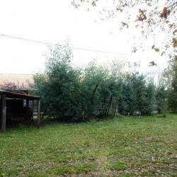 Vente Terrain Gujan-Mestras 600 m²