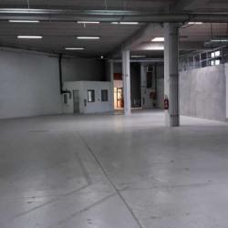 Vente Local d'activités Marolles-en-Brie 1240 m²