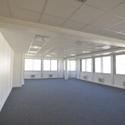 Location Bureau Le Vésinet 293 m²