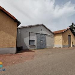 Location Local d'activités Le Coteau 340 m²