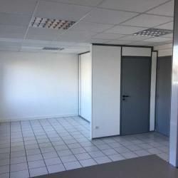 Location Local d'activités Brignais 315 m²