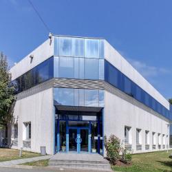 Location Local d'activités Bonneuil-sur-Marne 6605 m²