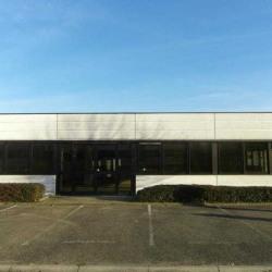 Location Bureau Strasbourg 431 m²