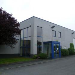 Vente Local d'activités Bailleul 642 m²