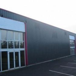 Location Local d'activités Ingré 980 m²