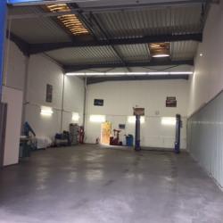 Location Local d'activités Vitrolles 180 m²
