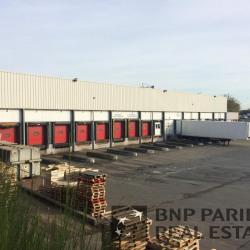 Location Local d'activités Noyal-sur-Vilaine 2400 m²