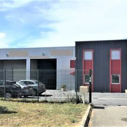 Location Local d'activités Castelnau-d'Estrétefonds 546 m²
