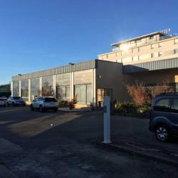 Vente Entrepôt Chassieu 670 m²