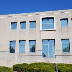 Location Bureau Saint-Quentin-Fallavier 242 m²