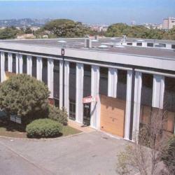Location Bureau Marseille 9me BouchesduRhne 13 2937 m