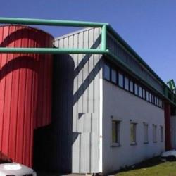 Location Local d'activités Échirolles 279 m²