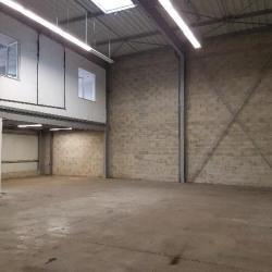 Location Local d'activités Tremblay-en-France 250 m²