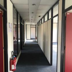 Vente Bureau Lognes (77185)