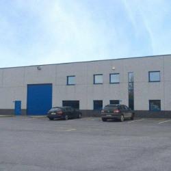 Location Local d'activités Bailleul 969 m²