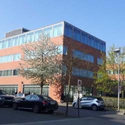 Vente Bureau Bussy-Saint-Georges 4368 m²