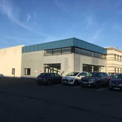 Location Local d'activités Wambrechies 692 m²