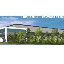 Location Entrepôt Castelnau-d'Estrétefonds 10672 m²