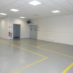 Location Local d'activités Colomiers 384 m²