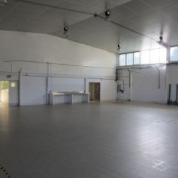 Location Local d'activités Carros 729 m²